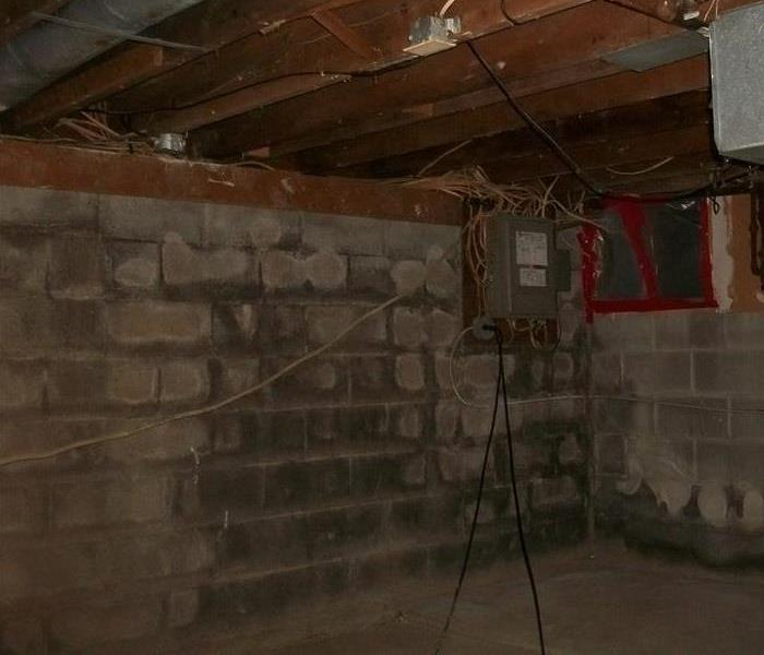 Mold Remediation Basement Job Before